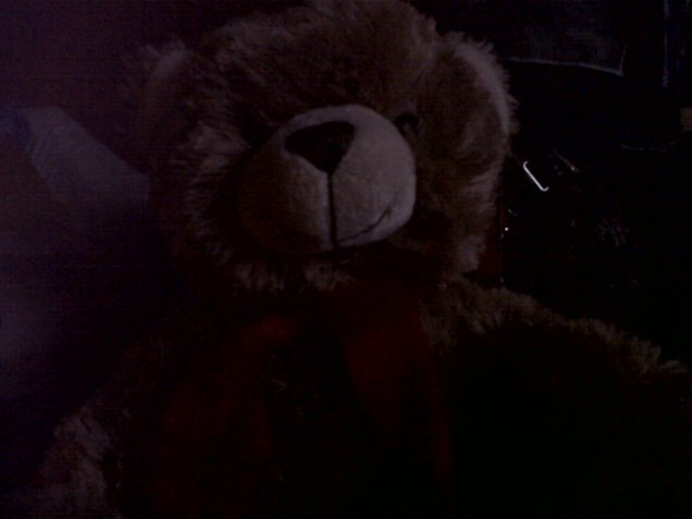 The teddy I got from a well known card shop