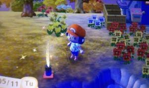 Animal Crossing New Leaf Fireworks